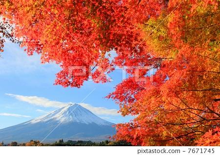 照片素材(图片): 富士和秋天的风景