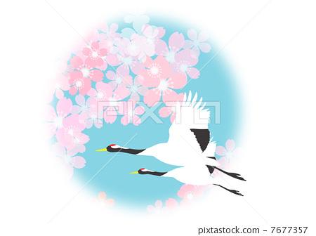 插图素材: 鹤 花朵 花