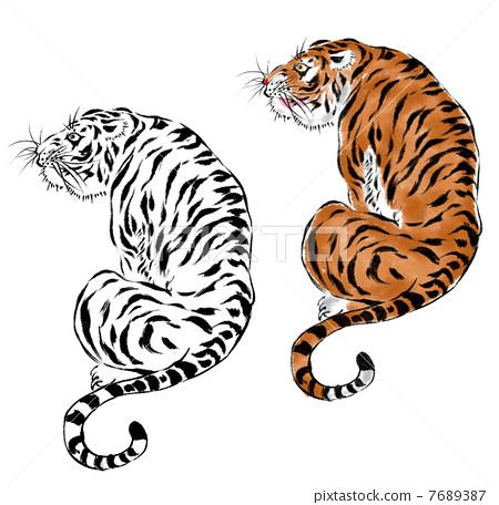 图库插图: 老虎 虎 纹身