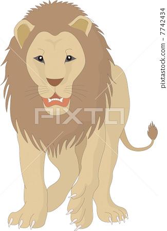 狮子 矢量图 stock 插图