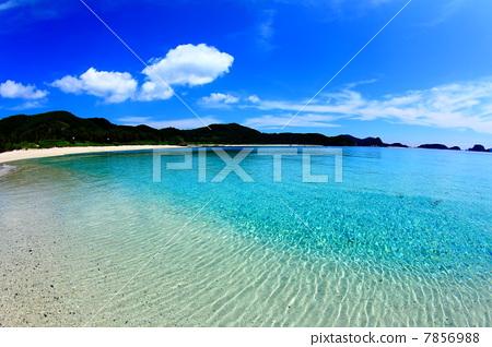 照片素材(图片): 蓝色的海洋 海滩 沙滩