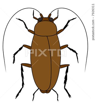 蟑螂简笔画彩色图片图片