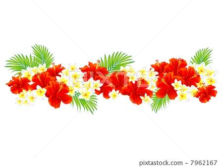 图库插图: 矢量 花朵 花卉