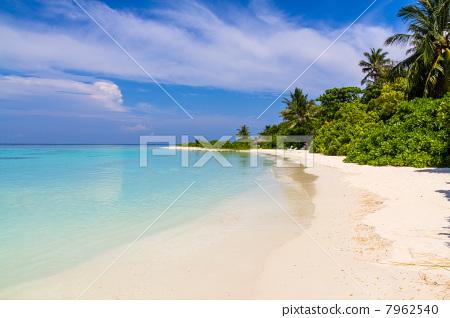 图库照片: 马尔代夫 海滩 白沙