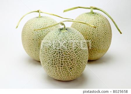首页 照片 蔬菜_食品 水果 哈密瓜 甜瓜 哈密瓜 网  *pixta限定素材仅