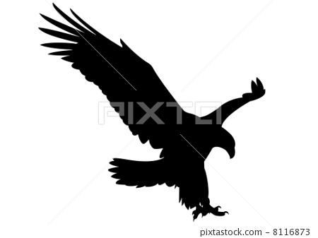白底3d手绘鹰