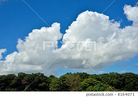 秋日天空百度云