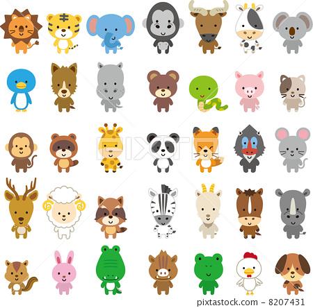 动物 一只动物 动物群