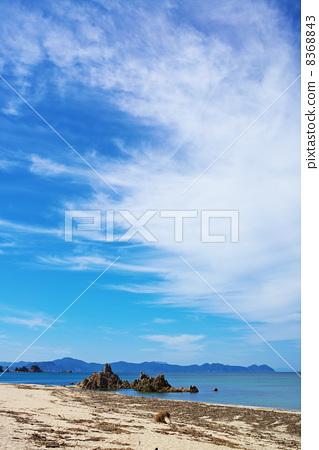 图库照片: 水晶海滩 浮木 台风过后晴朗的天空