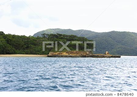 西表岛 八重山诸岛