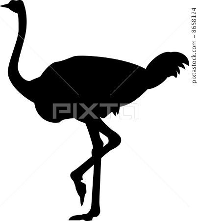 插图素材: 鸵鸟 矢量 图标