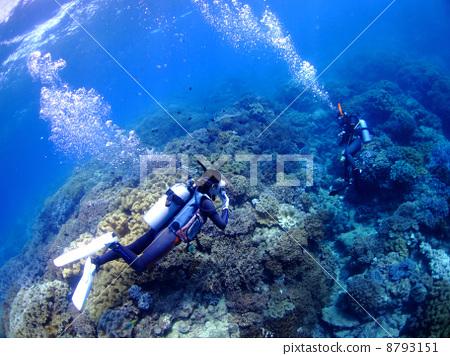 照片素材(图片): 戴水肺潜水 海底 水下照片