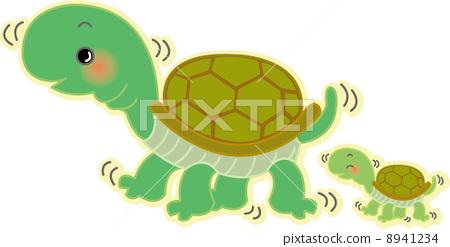 乌龟 爬行动物 甲壳动物