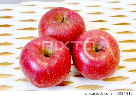 首页 照片 蔬菜_食品 水果 苹果 苹果 富士圣 水果  pixta限定素材