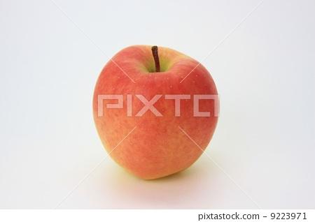 首页 照片 蔬菜_食品 水果 苹果 苹果 单个物件 一  *pixta限定素材仅