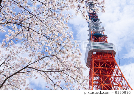 东京铁塔 东京塔 观察台