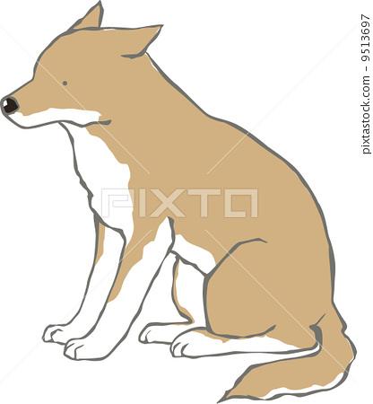 犬类书籍排版设计