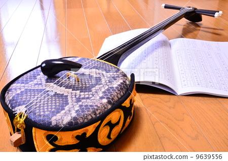 图库照片: 三弦琴 蛇皮 蟒蛇