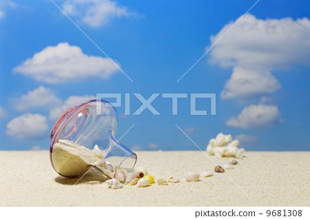 图库照片: 沙滩 海滩 贝壳