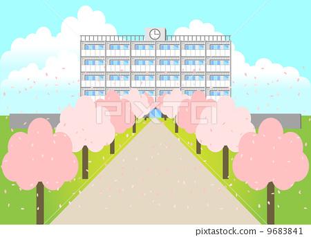 樱花 学校建筑 樱桃树