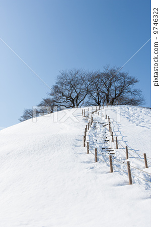 梦见冬天夏天两种景色
