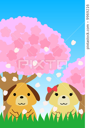 四月 樱桃树 狗
