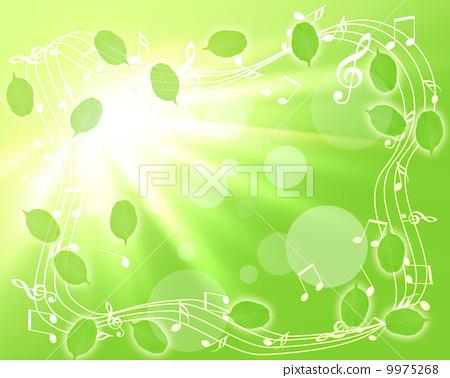 树叶 银杏叶 音乐