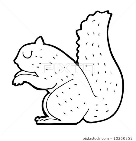 松鼠 动物 stock 插图