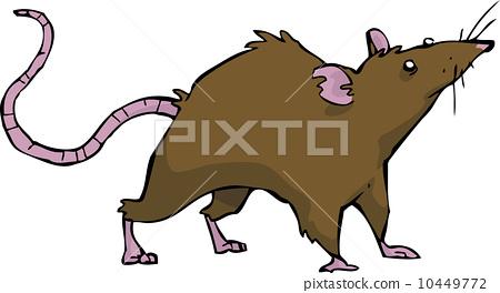 杂食动物 stock 插图