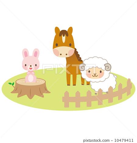 动物 绵羊 可爱