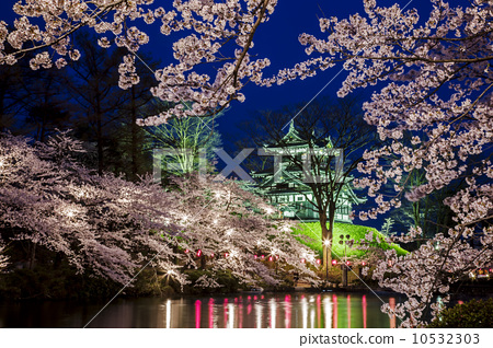 樱花树彩铅画场景图|彩铅手绘盛夏樱花树可爱