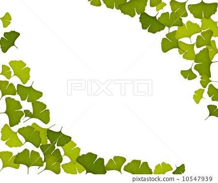 树叶淡雅边框 高清
