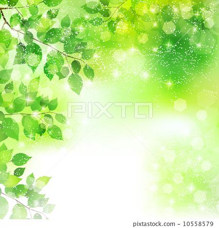插图 矢量图 树叶 树枝 叶子