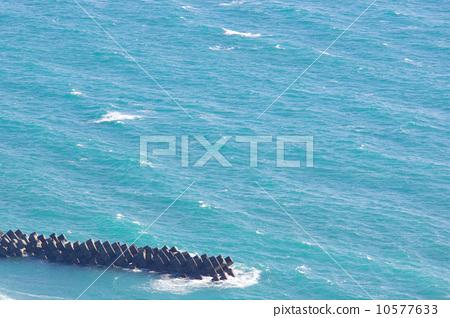 图库照片: 四足动物 海洋 海