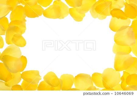 花瓣 上升 边框