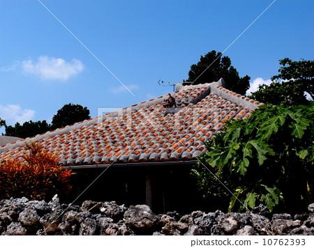 红瓦房顶鸽子笼设计图