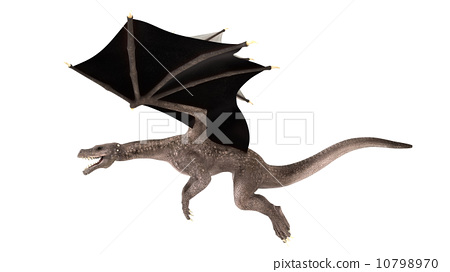 龙翼 动物