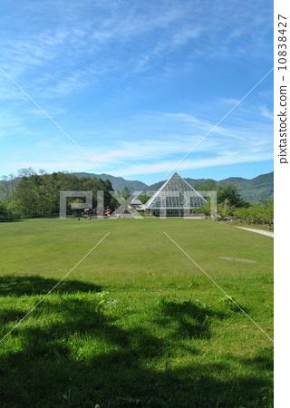 草地 圆山公园 方形