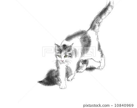 胆小的 猫 水彩画
