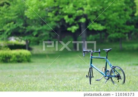 公园 自行车 稻田