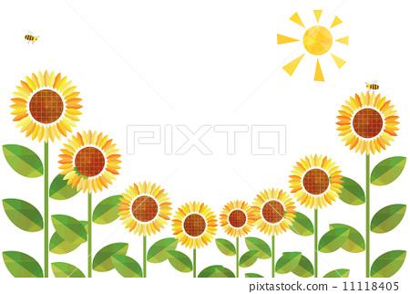 插图素材: 向日葵花田 向日葵 花朵