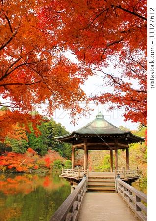 图库照片: 成田山公园在秋天