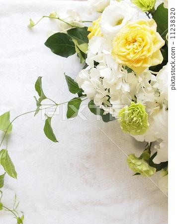 花朵 插花 花卉