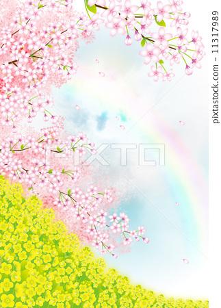 插图素材: 开花 花 开花的