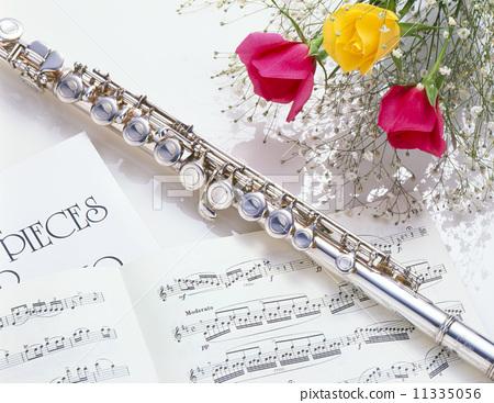 室内 首页 照片 乐器 木管乐器 长笛 长笛 绿色 室内  *pixta限定素材