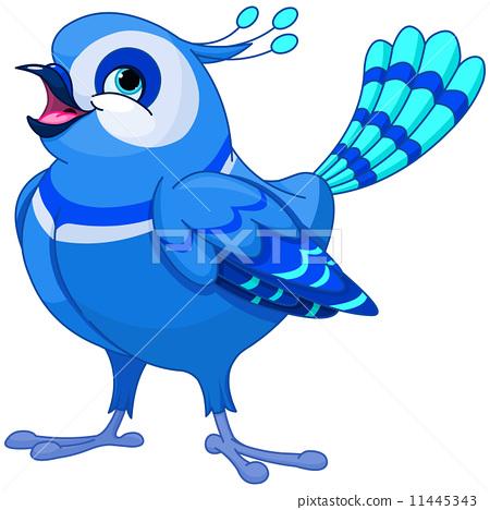 bluebird 11445343