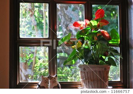 圖庫照片: 窗邊的風景