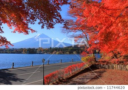 日本风景 山梨 富士山 照片 河口湖 富士山 漂亮 首页 照片 日本风景