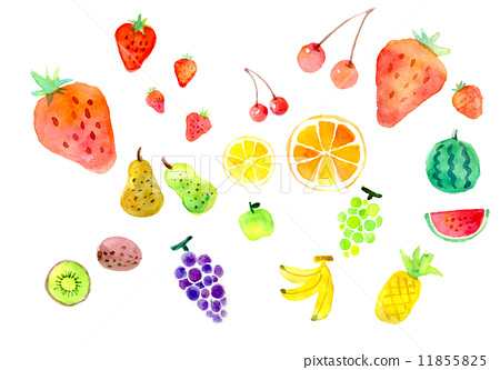 水果 水彩画 橘子