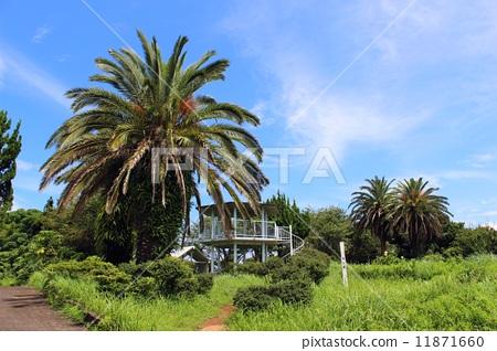 公园 日本 风景名胜